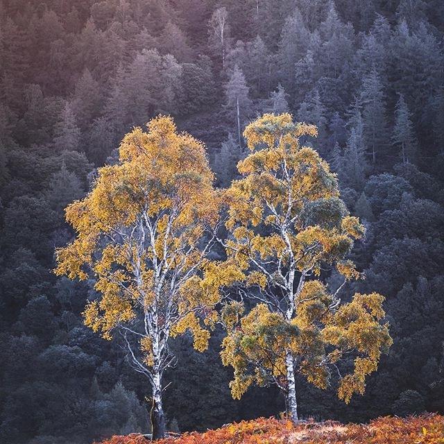 Kinh nghiệm chụp ảnh,Ảnh thiên nhiên
