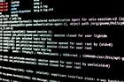 Phát hiện lỗ hổng giúp hacker tấn công hệ thống của nhà mạng Việt Nam