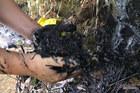 Hòa Bình mổ xẻ hiện trường đổ dầu thải đầu nguồn nước sạch sông Đà
