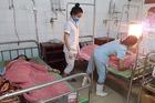 5 học sinh Nghệ An bị sét đánh khi đi học về