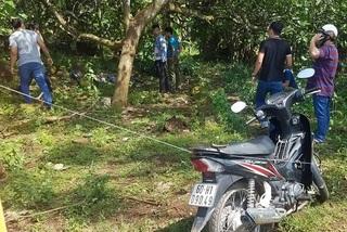 Nhân viên bất động sản chết bất thường trong vườn điều ở Đồng Nai