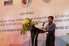 Mekong Delta subsiding at alarming rate: workshop