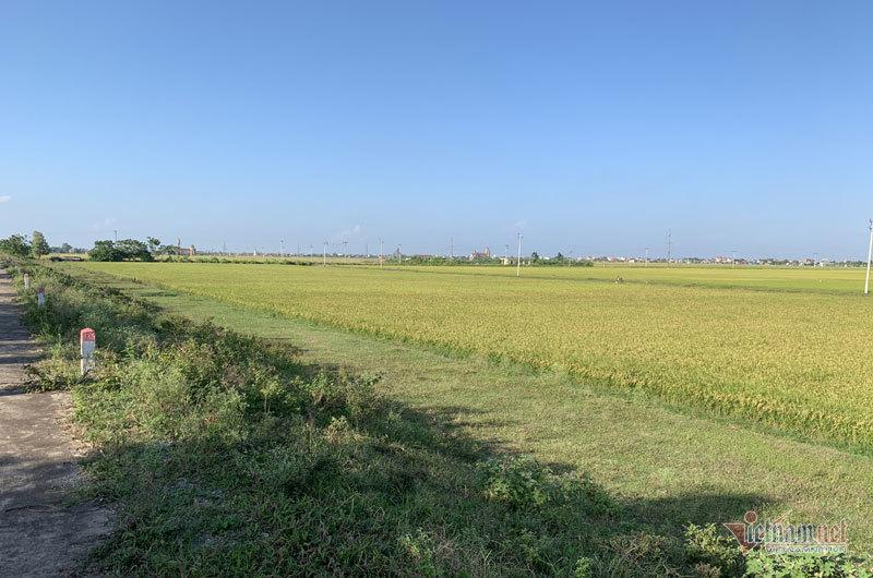 Quảng Trị đặt mục tiêu không còn huyện trắng xã Nông thôn mới