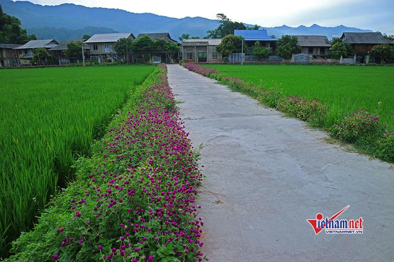 Nông dân góp 150.000 tỷ đồng xây dựng Nông thôn mới