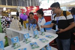 Vietnamese dairy products officially allowed into China