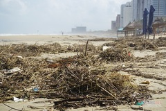 Danang beaches suffer waste following torrential rains