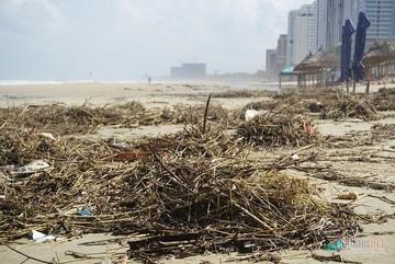 Danang beaches suffer waste following torrential rains