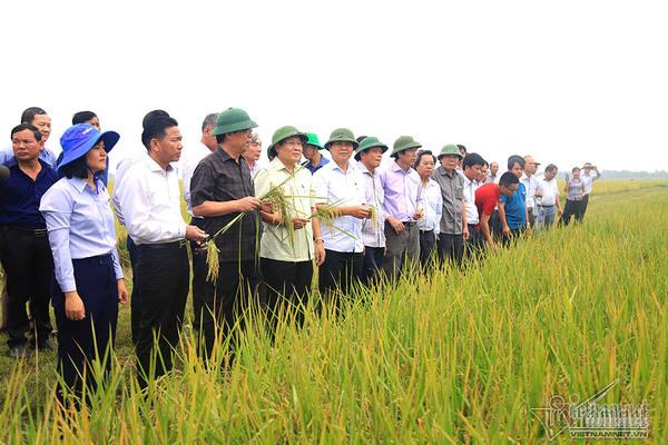 Xóa đói giảm nghèo nhờ xây dựng nền nông nghiệp sạch