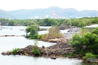 Thu hồi quyết định giao đất dự án nghìn tỷ ở đầm Thị Nại