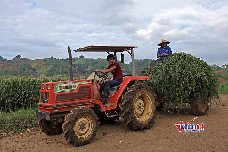 Huyện Quang Bình đào tạo nghề gắn với giải quyết việc làm cho lao động, giảm nghèo bền vững