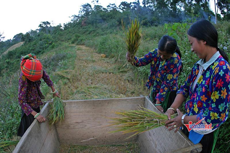 Phụ nữ xã Quảng Nguyên thoát nghèo nhờ nguồn vốn vay từ quỹ tín dụng
