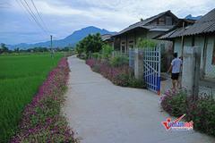 Hà Nam phấn đấu đến năm 2020 đào tạo nghề cho 32.000 lao động nông thôn