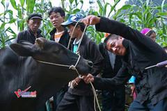 Xóa đói, giảm nghèo để bảo đảm thực thi nhân quyền bền vững