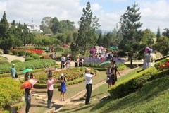 Da Lat to host Flower Festival 2019 in December