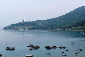 Da Nang authorities at fault for several violations on Son Tra Peninsula