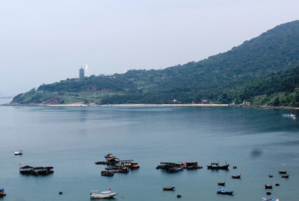 Da Nang authorities at fault for several violations on Son Tra Peninsula