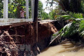 VN Environment Ministry to survey Mekong Delta's subsidence