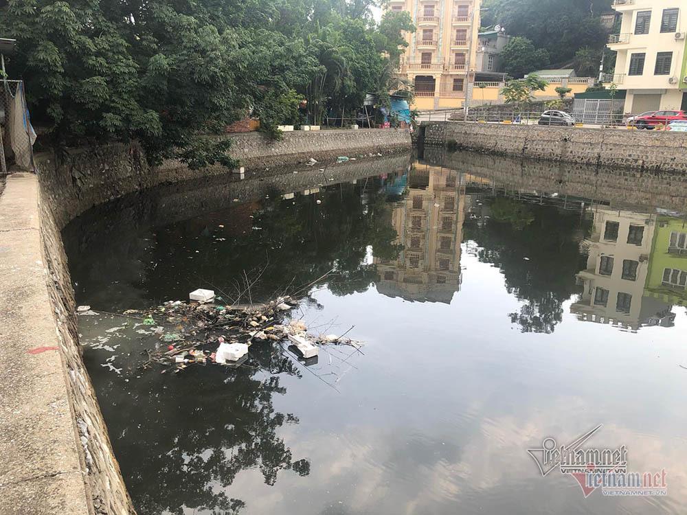 Cá chết kín hồ điều hoà ở Quảng Ninh, dọn cá không dọn rác