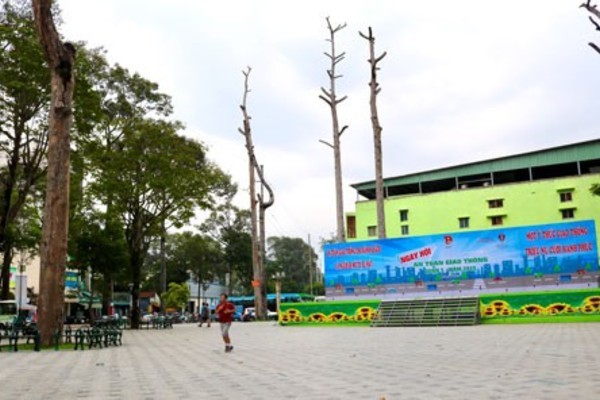 Trees dying after HCM City park renovation
