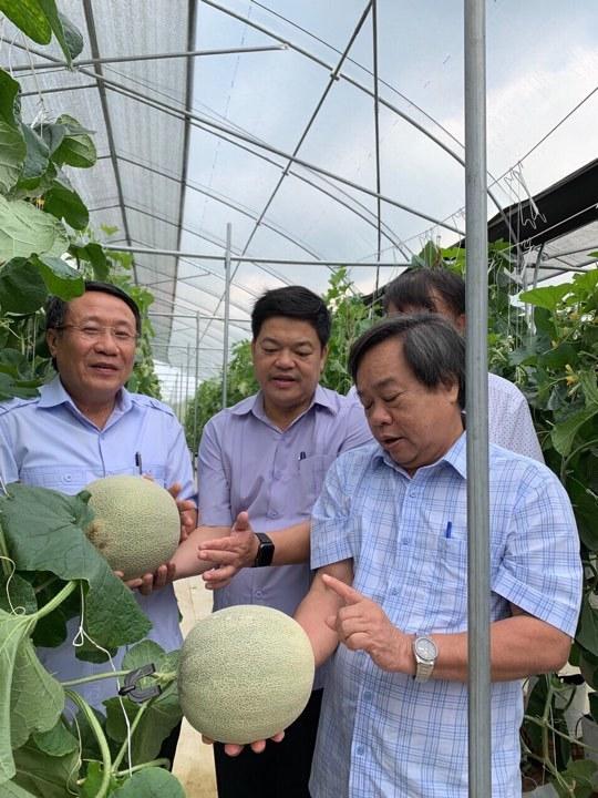 Nông nghiệp hữu cơ đâu chỉ phục vụ riêng giới nhà giàu