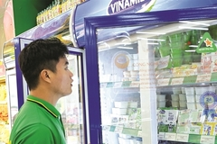 Vietnamese dairy brands go abroad as foreign brands arrive in VN