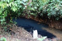 Nước nhiễm dầu thải, Viwasupco xin lỗi, miễn phí 1 tháng tiền nước