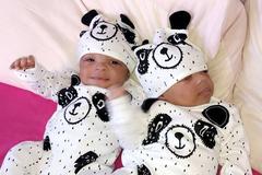 Cặp song sinh vừa chào đời đã bị ung thư máu, một bé qua đời ngay sau đó