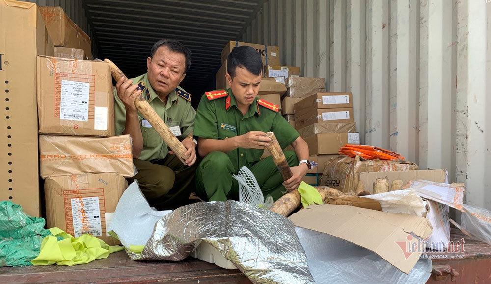 4 cặp ngà voi trong thùng xe container của tài xế Đà Nẵng