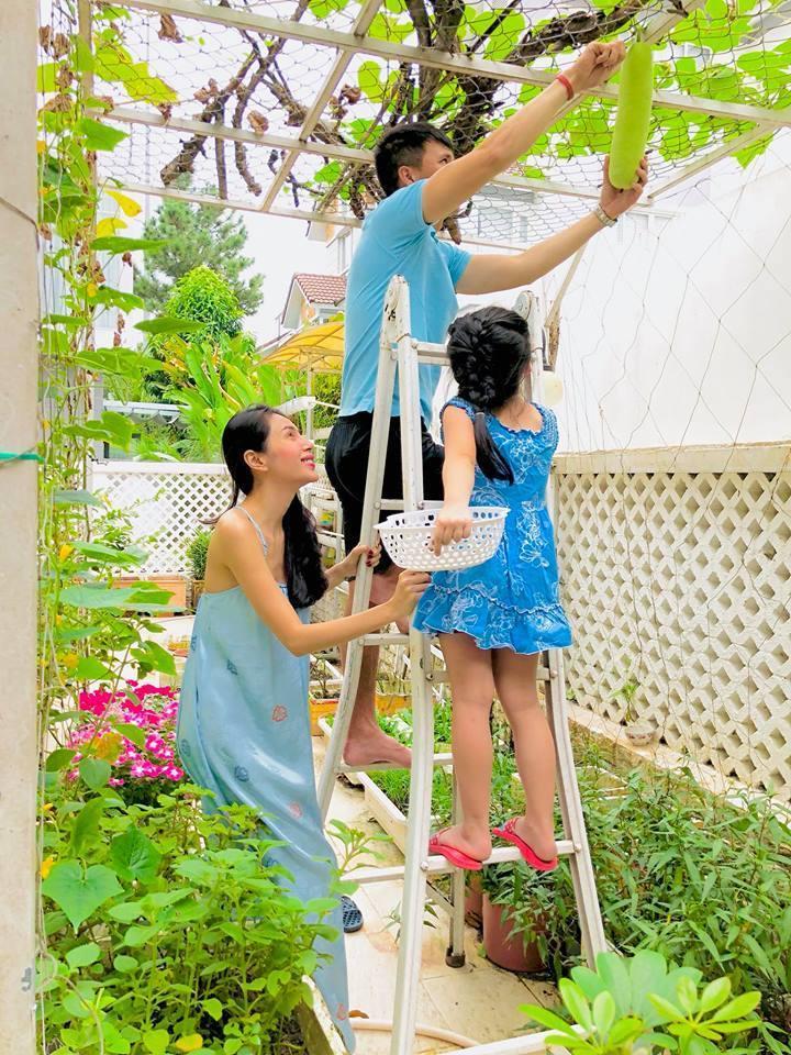 Khu vườn đủ thứ rau quả sạch trong biệt thự của Công Vinh - Thủy Tiên
