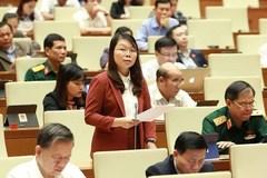 Bill on entry, exit of Vietnamese citizens under spotlight at NA on October 28