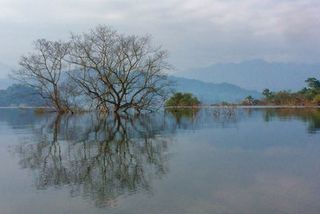 ASEAN recognises three more Vietnamese national parks