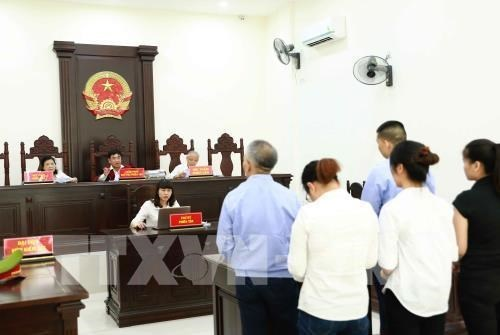 Five Chinese and Vietnamese jailed for involving in illegal surrogacy ring
