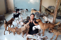Đội 9X đặc biệt chuyên cứu hộ động vật gặp nạn