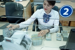 Vietnam's forex rate forecast to remain stable till year-end