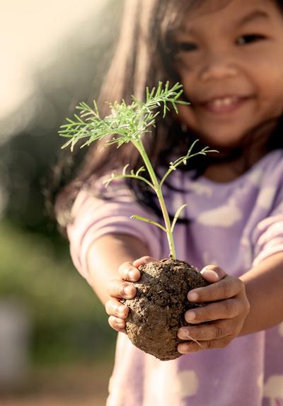 Chung tay góp quỹ trồng hơn 3 vạn cây xanh
