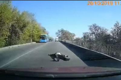 Xe cứu thương mải chạy, bệnh nhân rơi xuống đường không ai hay