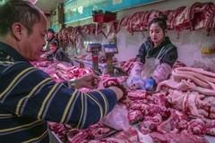 Thịt lợn nhân tạo phát triển mạnh mẽ ở Trung Quốc