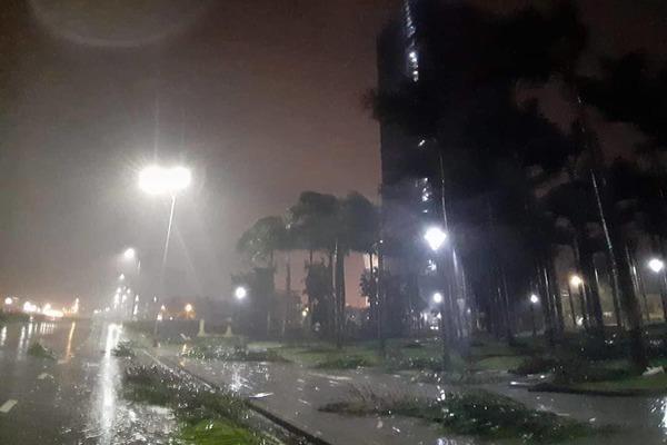 Bão số 5 đổ bộ, mưa to gió giật ở Bình Định