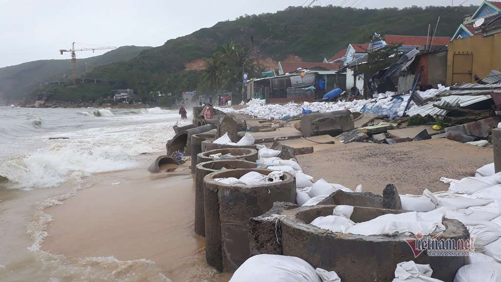 tin bão mới nhất,Bình Định,Quảng Ngãi,Phú Yên
