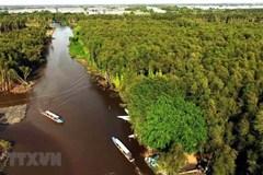 Bác tin TP.HCM, đồng bằng sông Cửu Long bị xoá sổ vào năm 2050
