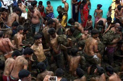Xem đàn ông Ấn Độ phấn khích bôi trét, ném phân bò vào nhau