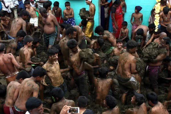 Ấn Độ,lễ hội lạ,ném phân bò