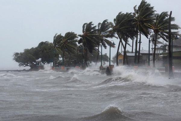 Dự báo thời tiết tuần tới, xuất hiện áp thấp nhiệt đới có thể mạnh thành bão
