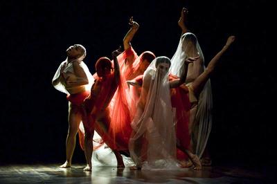 Múa đương đại Việt Nam gây ấn tượng ở lễ hội múa lớn nhất Châu Á