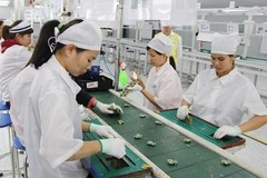 Foreign businesses look to expand investment in Vietnam