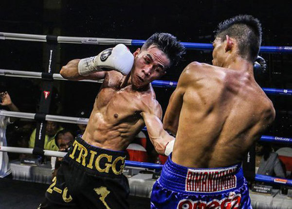 WBO Oriental Youth Title Match 2019,Vietnamese boxers,Thao wins,sports news,Vietnam sports,vietnamnet bridge,english news,Vietnam news,vietnamnet news,Vietnam breaking news,Vietnamese newspaper articles