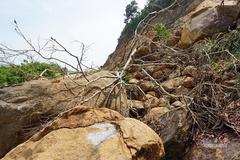 Bán đảo Sơn Trà sạt lở nham nhở, tiềm ẩn nguy hiểm cho du khách