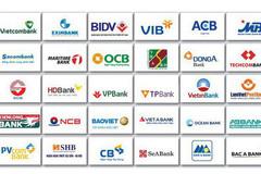Credit is major 'rice pot' for Vietnamese banks