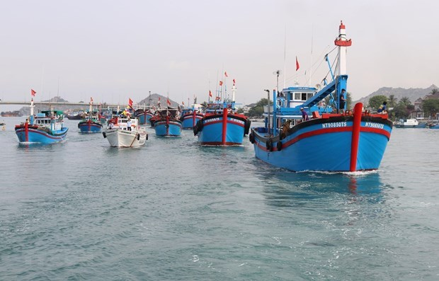 EC's inspectors to check Vietnam's IUU fishing combat