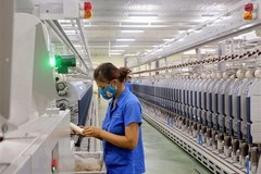 VN textile and garments likely to hit$40bin exports this year
